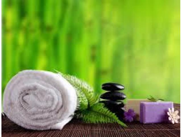 Centre de massage phénoménal 53 900 033 - 1