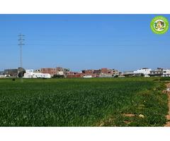 terrain constructible + titre bleu + eau +électricité EN PROMOTION - Image 3/6