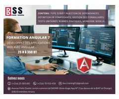 Formation Angular7