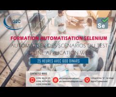 Formation Selinuim
