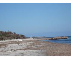 terrain prés de nabeul - Image 2/3
