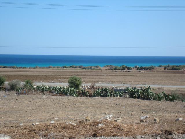 Terrain de 1000 m² près d'el haouria - 2