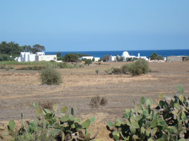 Investissement au Cap Bon - 2