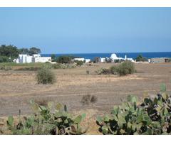 Investissement au Cap Bon - Image 2